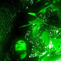 緑ファンタ